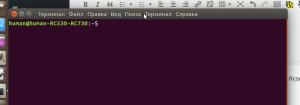 ubuntu15_10_terminal