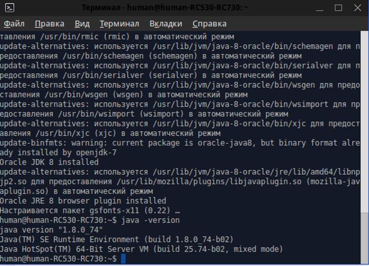 java ubuntu